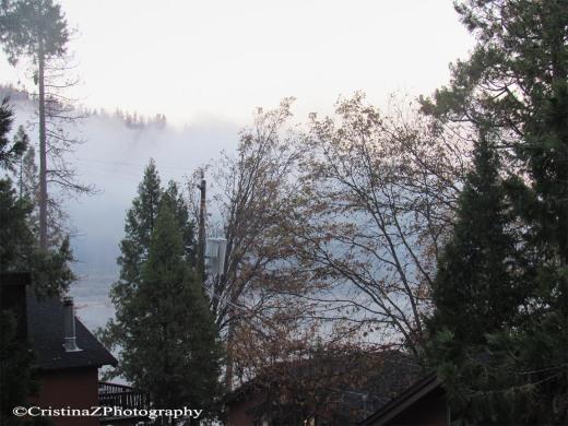Bass Lake Fog